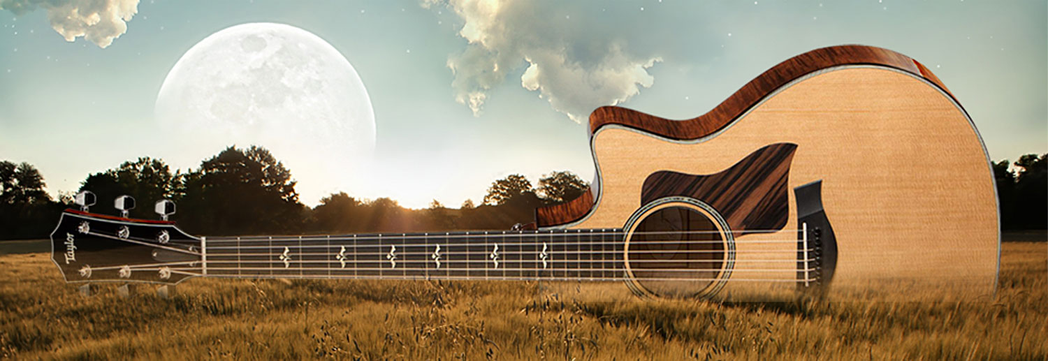 Guitar in a wheat field with a full moon rising